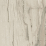 Petrified Wood Beige (1)