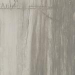 Petrified Wood Grey (3)